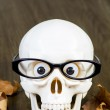 Skull with glasses — Stock Photo #53764523