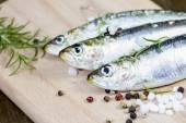 Raw sardine with spices — Stockfoto