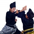 Two malay Asian young boys sparring a pencak silat, Malay traditional discipline martial art isolated on white background — Stock Photo #66111923