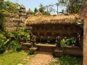 Phuket Botanical Garden, Phuket, Thailand — Stock Photo