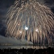 Постер, плакат: WOW Incredible juicy Fireworks shot