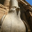 Statue of Egyptian God Horus Inside Edfu Temple, Egypt — Stock Photo #56835777