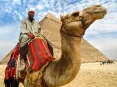 Camel Man in Front of Giza Pyramid, Cairo, Egypt — ストック写真