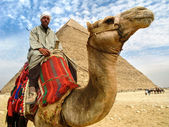 Camel Man in Front of Giza Pyramid, Cairo, Egypt — Stock Photo