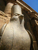 Statue of Egyptian God Horus Inside Edfu Temple, Egypt — Stock Photo