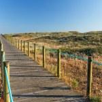 Sea coast dune with wooden walkway — Stock Photo #76578133