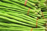 Long bean in the market — Stock Photo