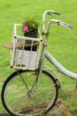 Vintage bicycle in the garden — Stock Photo