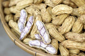 Peanut boiled in the market — Stock Photo