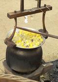 Wrzenia kokon w garnku przygotować jedwabny kokon. — Zdjęcie stockowe
