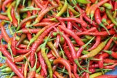 Fresh chili in the market — Stock Photo