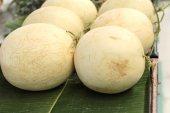 Melon jaune - Asie de fruits sur le marché — Photo