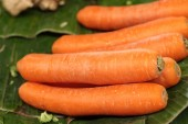 Close-up of the fresh carrots. — Stock Photo