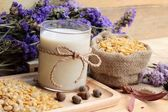 Soy milk with soya beans — Stock Photo
