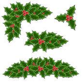 Christmas holly decoration set — Stock Vector