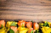 Dekorace růže — Stock fotografie