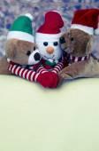 Christmas bear and snowman — Foto de Stock