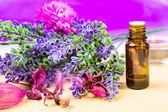 Lavender fragrance oil — Stock Photo