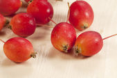 Crab apple — Stock Photo