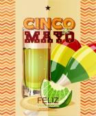Cinco de Mayo. Feliz. Viva Mexico.  Day victory at Puebla, Mexico Independence Day. — Stok Vektör
