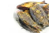 Fried Snakeskin gourami isolate on white — Stock Photo