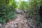 Walkway in Mountains ,Samroiyod nation park, Thailand. — Stock Photo