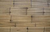 Bambus ściany tekstura tło — Zdjęcie stockowe