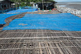 Bamboo floor in the place for making Shrimp paste under the sun, Thail  agriculture — Stock Photo