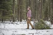 Young man is caryying christmas tree in the wood — Stock Photo