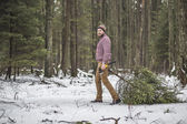 Young man is caryying christmas tree in the wood — Stok fotoğraf