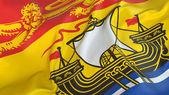 New Brunswick Flag — Stock Photo