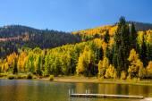 Fall in Steamboat Springs Colorado — ストック写真