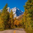 Fall Color in Aspen Colorado — Stock Photo #54917895