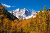 Fall Color in Aspen Colorado — Stock Photo
