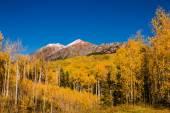 Fall Color in Crested Butte Colorado — Stock Photo