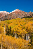 Fall Color in Crested Butte Colorado — Stock Photo