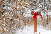 Snow covered holiday mailbox — Stock Photo
