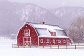 雪の中で赤い納屋 — ストック写真