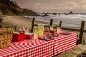 Sunset Picnic on Ocean Overlook — Stock Photo