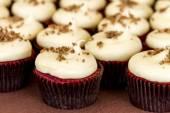 Assorted Cupcakes on Display — Zdjęcie stockowe