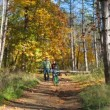 Happy Young Family With a Child On Bike Walking Along Footpath In Autumn Park — Stock Video #67472133