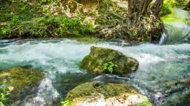 Rapid Mountain River Flowing Among Mossy Rocks And Tree Roots — Stock Video