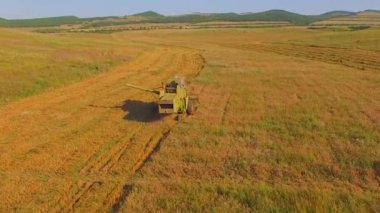 AERIAL VIEW. Small farms.Old combine harvesting. — Stock Video