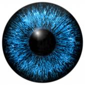 Eye iris generated hires texture — Stock Photo