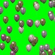 Easter eggs balloons generated seamless loop video green screen — Stock Video #64332871