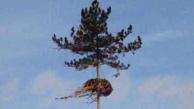 Maypole in wind — Stock Video