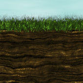 Grass with soil generated texture — Stock Photo
