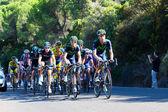 CORDOBA, SPAIN - August 26th: Alejandro Valverde (Movistar Team) — Stock Photo