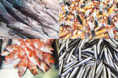 Assorted fish and seafood composition — Stok fotoğraf