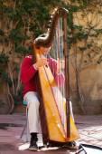 Man playing harp outdoors. — Stock Photo